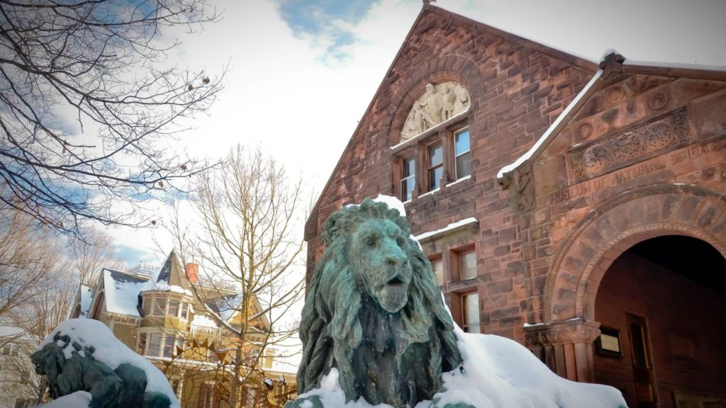 Saint Johnsbury Winter Cover_1