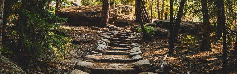 Stone Steps Path