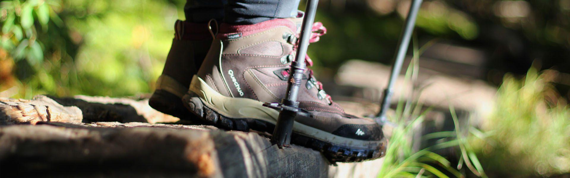 Catamount_Trails_Summer_Header