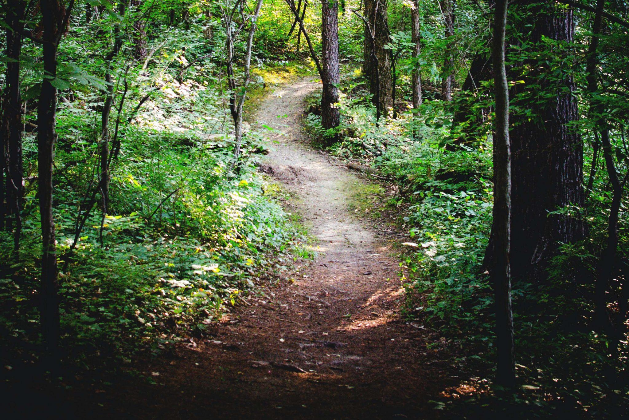 Hiking_Path