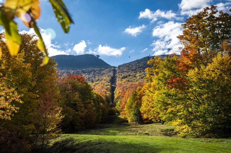 Foliage Jay Peak